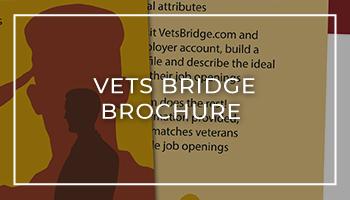 VetsBridge Brochure